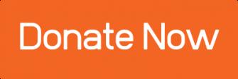 orange donate button
